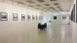 hip gallery1